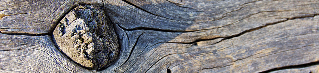 treeknot